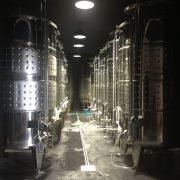 sala fermentacion